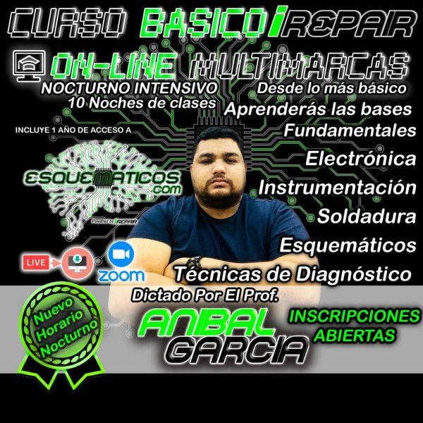 MAYO CURSO BASICO ONLINE EN VIVO - 10 CLASES ONLINE - CUPOS LIMITADOS (Anibal Garcia)